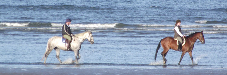 Horse Riding on the beach in Ireland