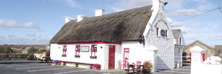 Traditional Irish Pub with Thatched Roof